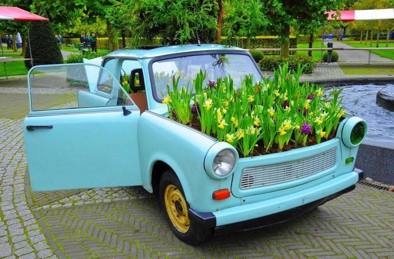 a flower bed in the car
