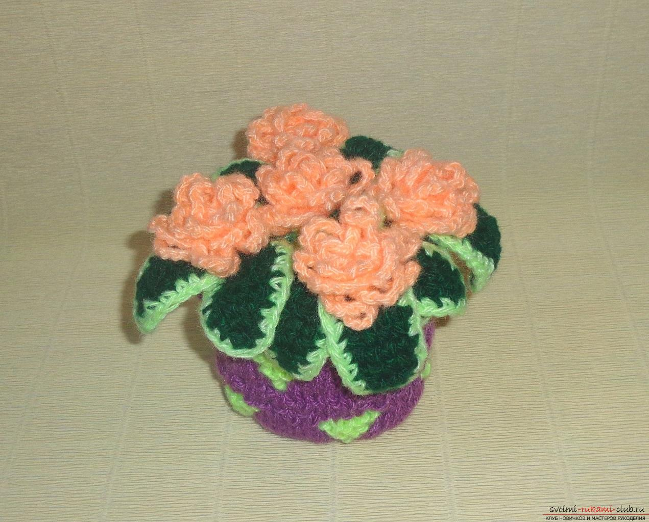 This master class of crochet crochet contains a rose scheme and a description of knitting .. Photo # 36