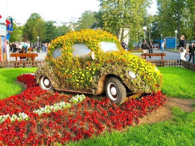 a flower bed on an old car