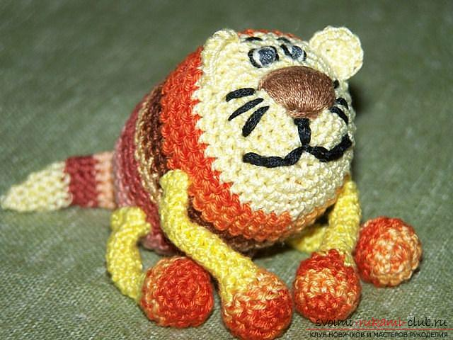 How to tie a crochet in the amigurumi technique with his own hands with a photo and description ?. Photo №1