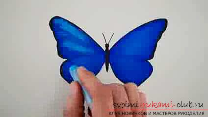 Master class on drawing a butterfly pastel with your own hands. Photo №4