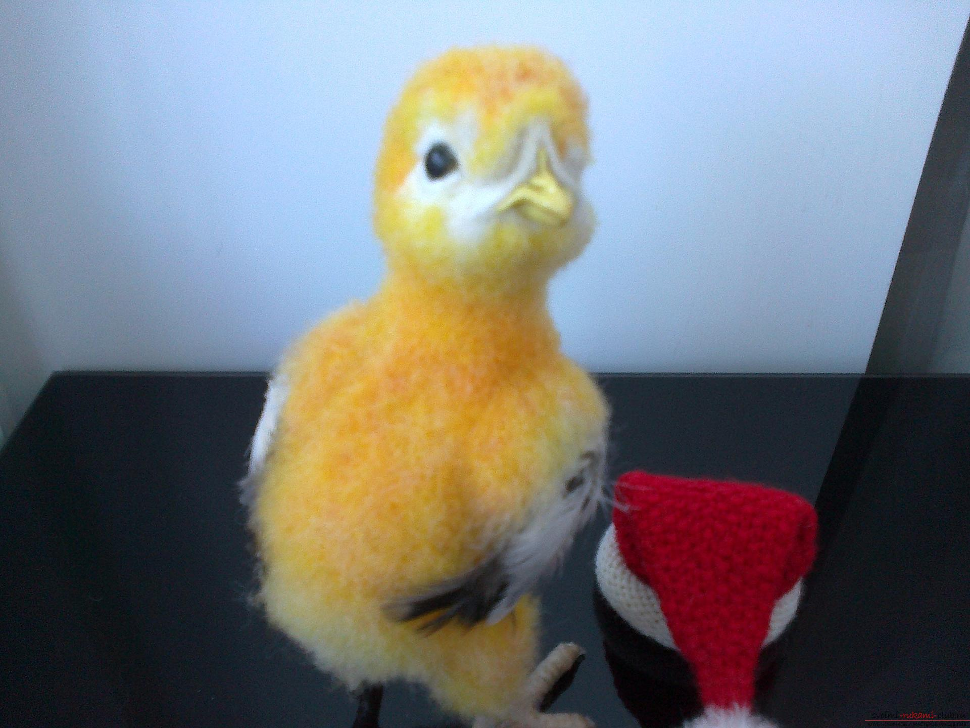 Description of the toy in the form of a chicken, made in the technique of dry felting. Picture №3
