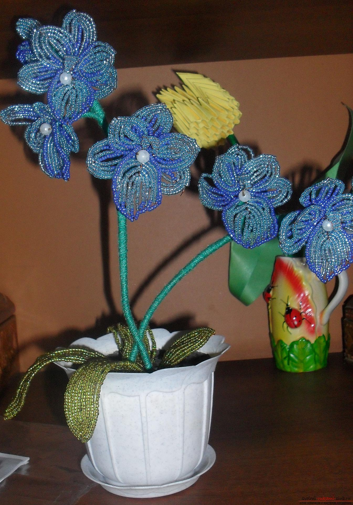 This orchid - a flower of beads, looking at the photo, you will understand how to weave it. Photo №1