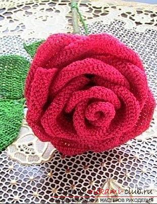 Схеми і докладний опис як зв'язати гачком об'ємну і плоску троянду своїми руками .. Фото №1
