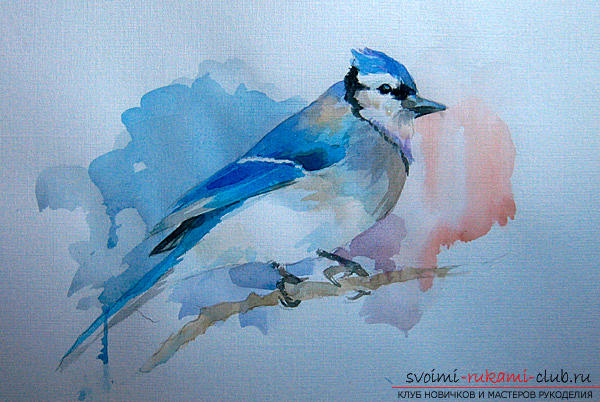 Drawing a watercolor bird. Photo №4