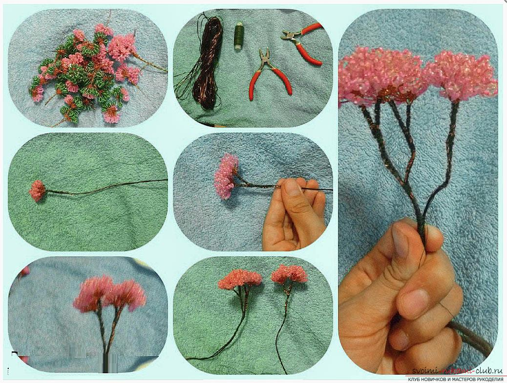 How to make a bonsai tree of beads with your own hands, several master classes of creating bonsai in different color solutions, step-by-step photos and description. Photo Number 14