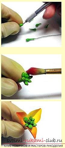 The flower of poinsettia and snow-berry berries is a lesson in polymer clay and a master class. Picture №3
