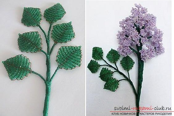 How to make a lilac branch of beads, step-by-step photos and a description of several weaving techniques for beaded floristics. Photo Number 21