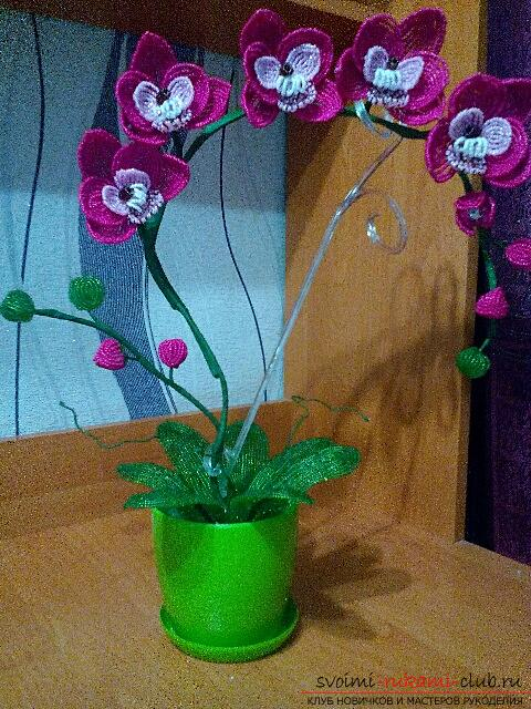Orchid Phalaenopsis from Chinese beads. Picture №3