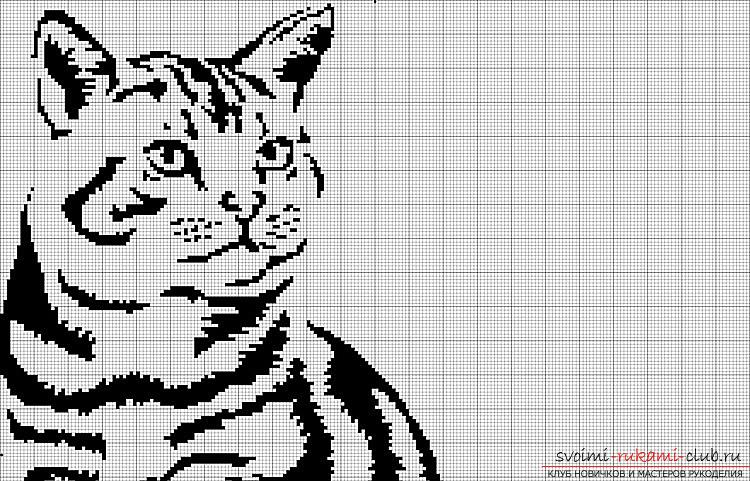 Black and white cross stitch patterns with description. Photo №1