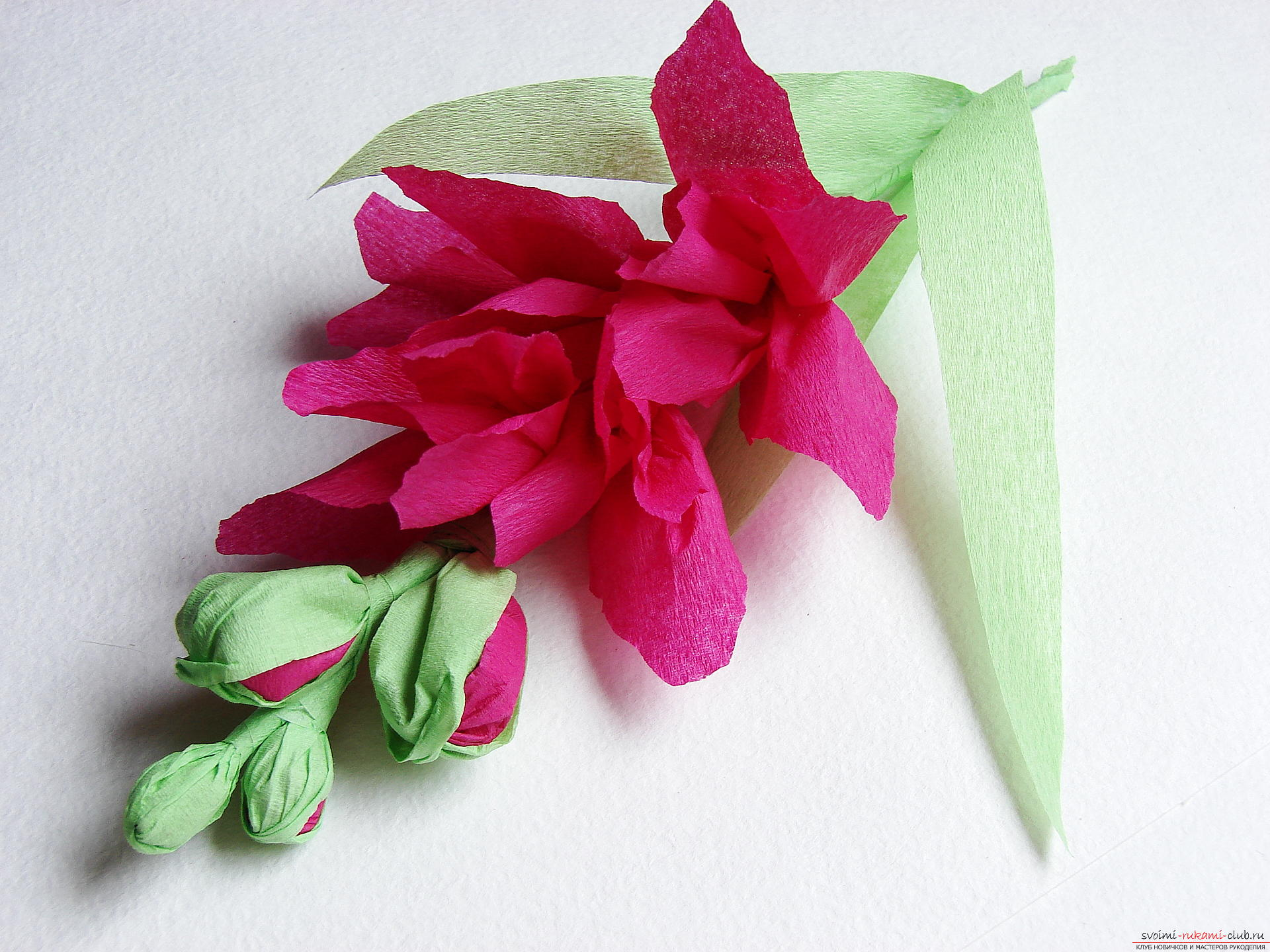 This master class will teach you how to make gladioli flowers from paper by yourself. Picture # 32