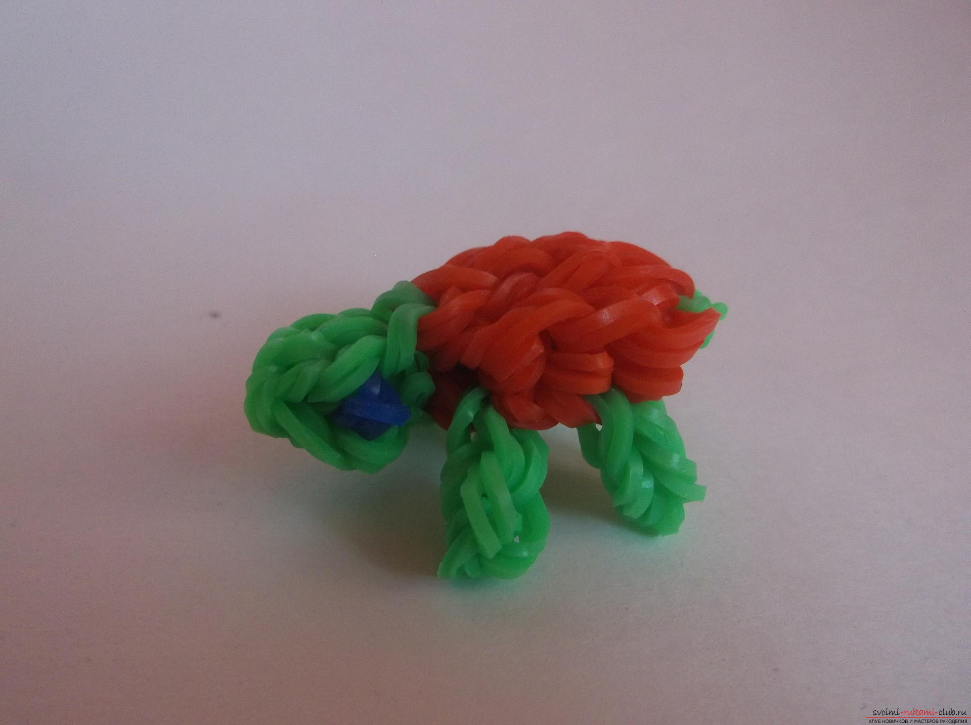 Photo to the lesson on the weaving of a turtle made of rubber. Photo №28
