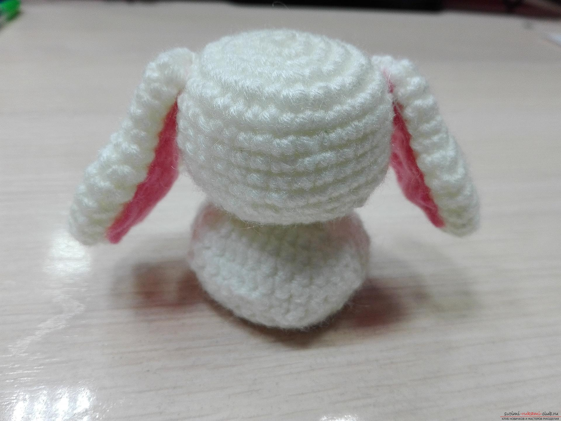 The master class will teach you how to create your own crocheted crocheted hare. Photo Number 14