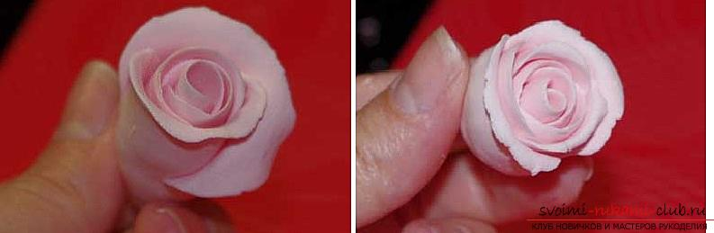 How to mold a rose from polymer clay, a master class with a detailed description and a photo .. Photo # 10