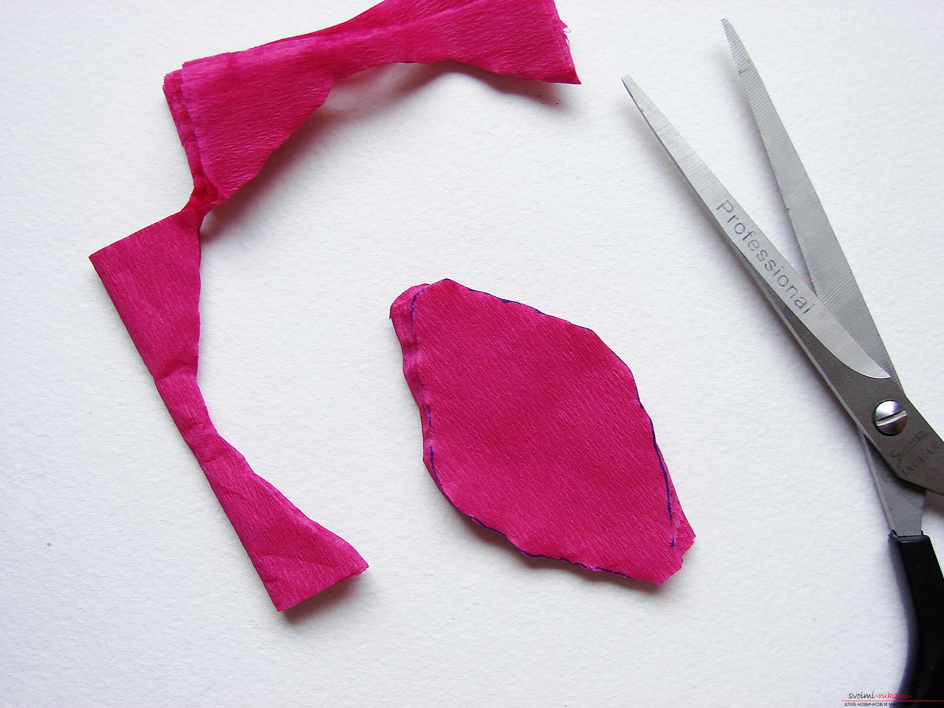 This master class will teach you how to make gladioli flowers from paper with your own hands .. Photo # 6