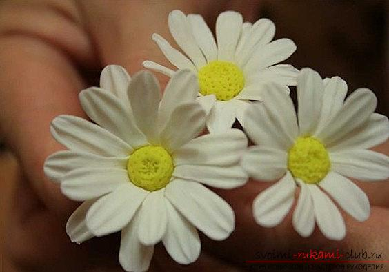 We make a daisy flower with the help of polymer clay - a master class for a beginner. Photo №5