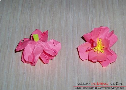 Sakura flowers in origami technique. Photo number 12