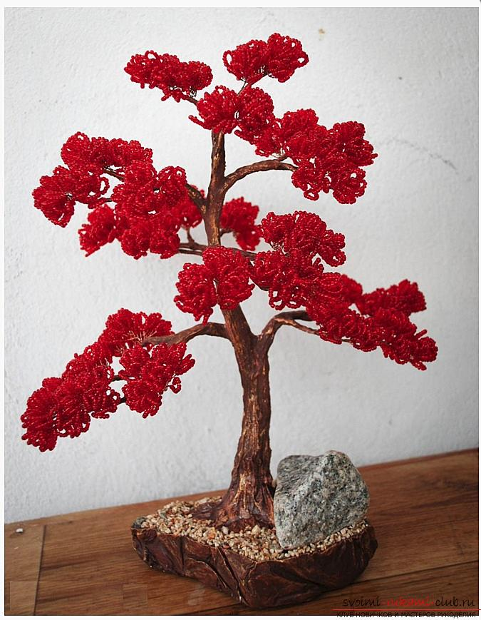 How to make a bonsai tree of beads with your own hands, several master classes of creating bonsai in different color solutions, step-by-step photos and description. Photo Number 22