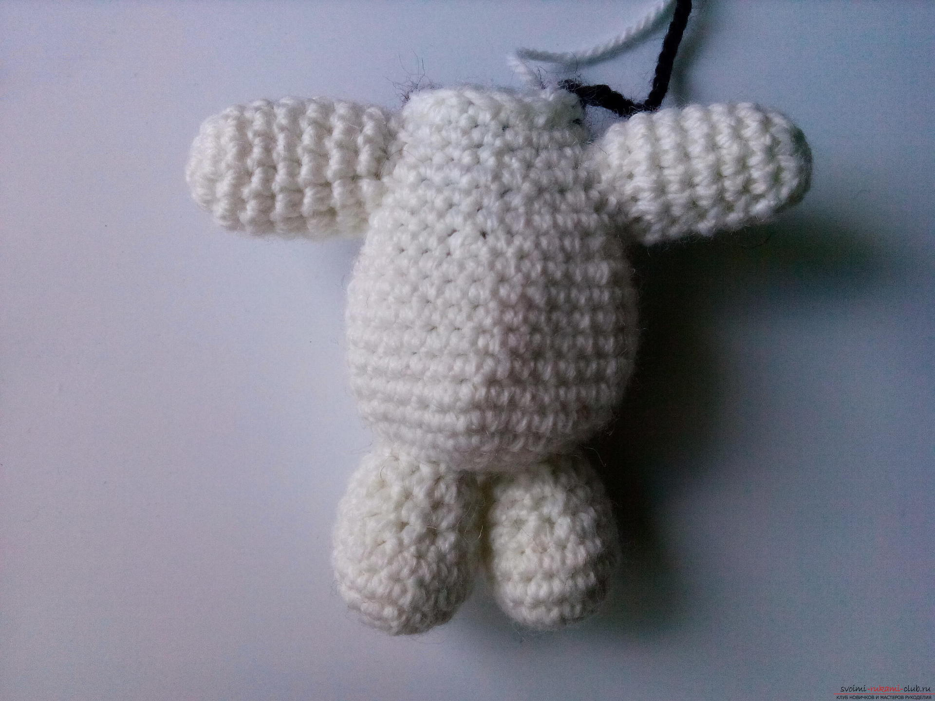 We create a knitted dog with a skirt with our own hands - an interesting master class. Photo Number 11