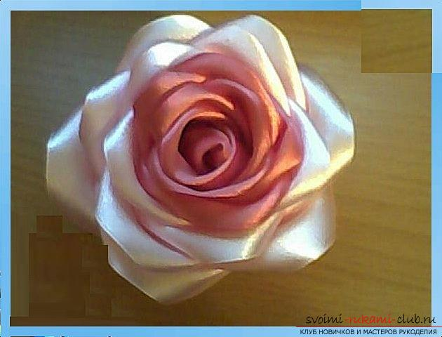 How to make roses from a ribbon with your own hands, step-by-step photos and instructions for creating a flower, seven variants of roses from a ribbon in the form of buds and blossoming flowers. Picture №10