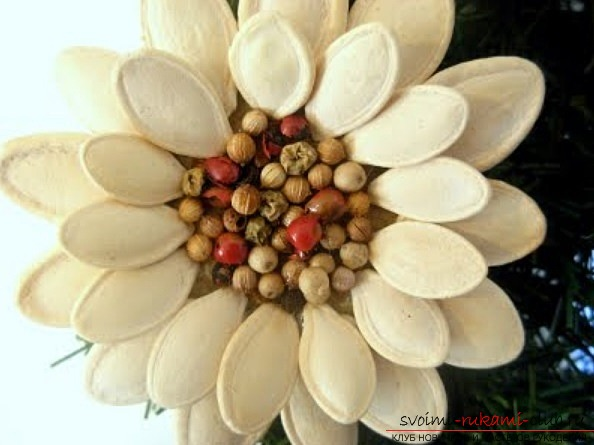 Crafts made from pumpkin seeds made by own hands. Simple and easy work .. Picture №3