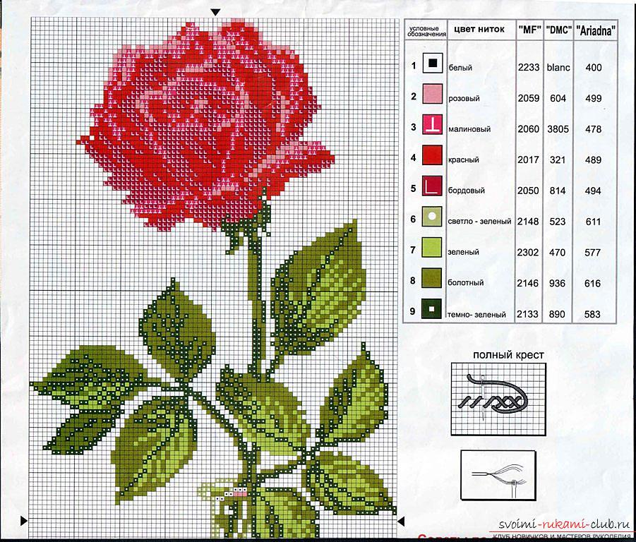 How to embroider a delicate rose with a cross quickly and easily. Photo №5