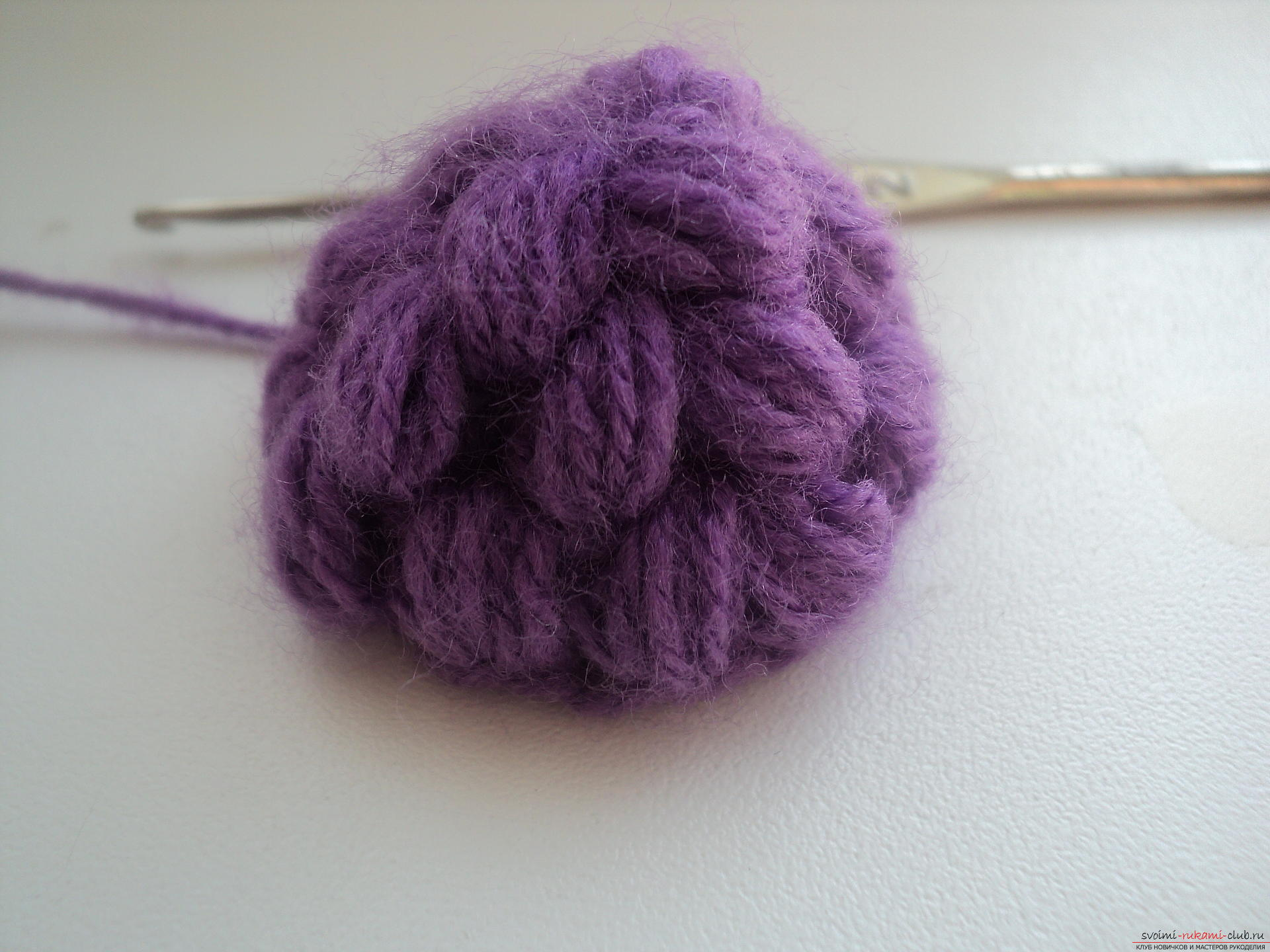 This detailed master class contains a crochet lesson and will teach you how to bind berries by yourself. Photo # 7