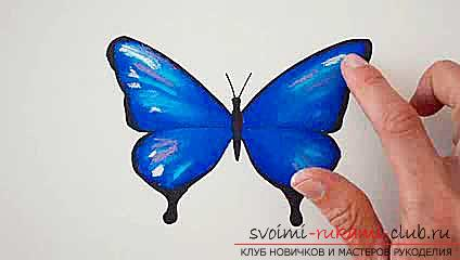 Master class on drawing a butterfly pastel with your own hands. Photo №6