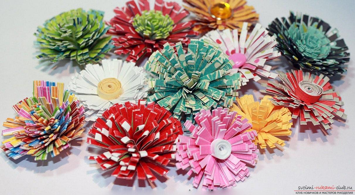 How to make asters for the house with their own hands? Quilling of a flower and a master class. Photo №5