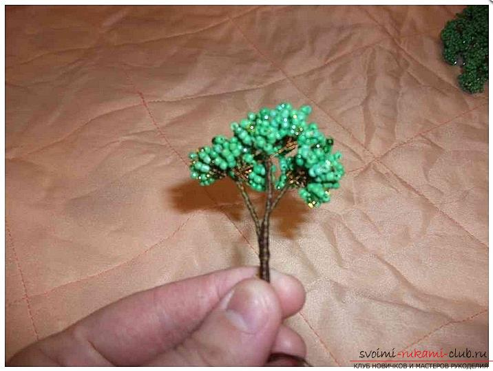 How to make a bonsai tree of beads with your own hands, several master classes of creating bonsai in different color solutions, step-by-step photos and description. Photo №6