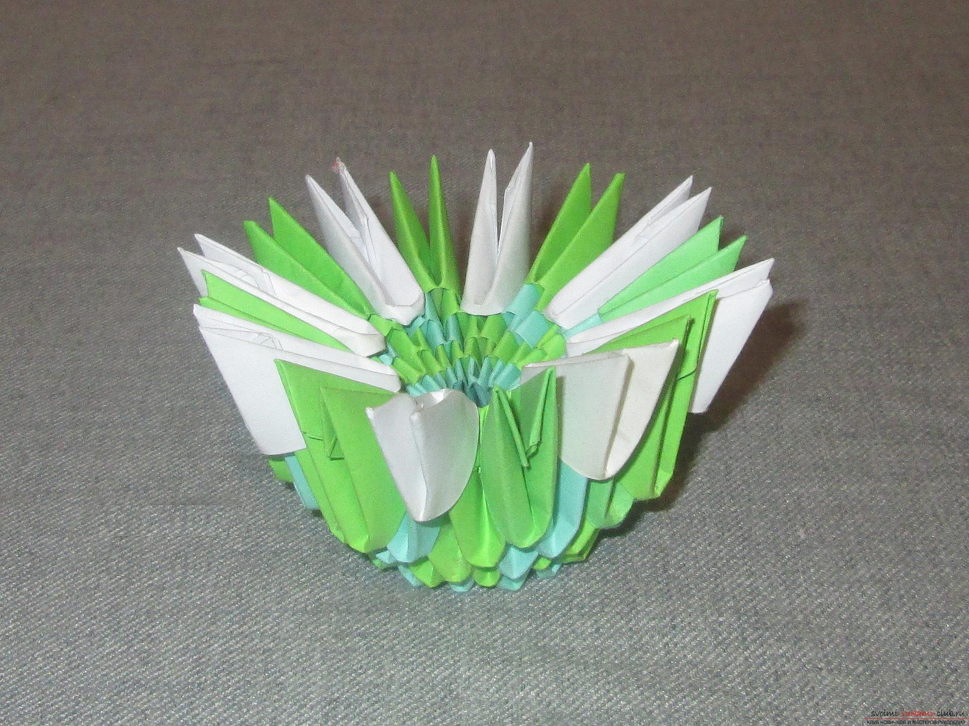 This detailed master-class modular origami with step-by-step photos contains a scheme for assembling birch from paper .. Photo # 5