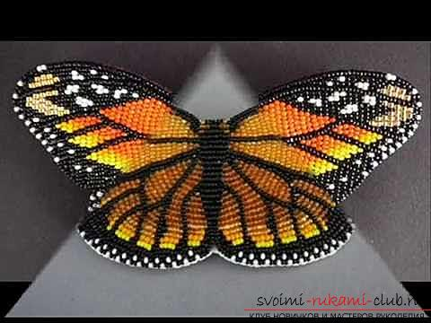 How to make a butterfly from beads according to the scheme? Hand-made beadwork. Photo №5