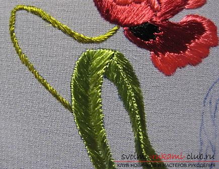 Embroidery with Chinese poppy on the scheme. Photo number 15