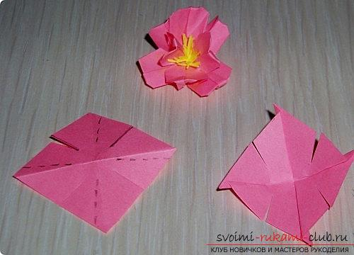 Sakura flowers in origami technique. Photo №5