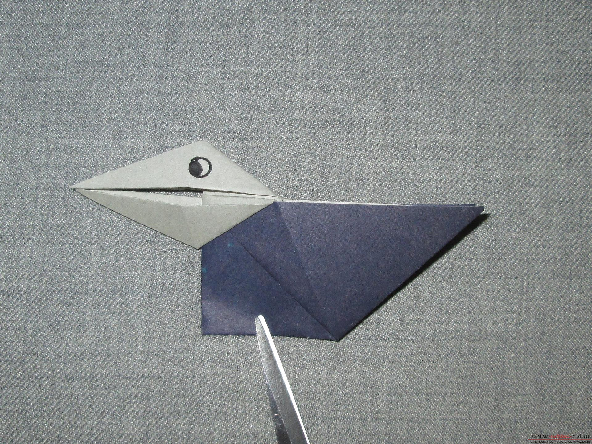 This detailed master class with photo and description will teach you how to make origami for beginners - origami-crow from paper .. Photo # 12