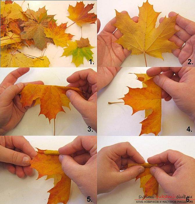 Crafts from maple leaves with their own hands: several lessons. Photo number 12