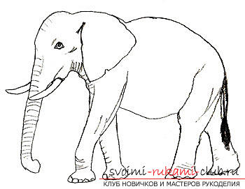 Step by step drawing an elephant in pencil. Photo №6