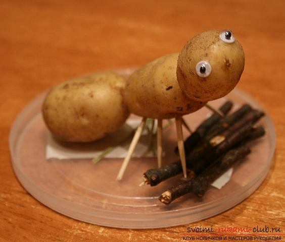 We learn to create original crafts from vegetables and fruits with our own hands. Photo №4