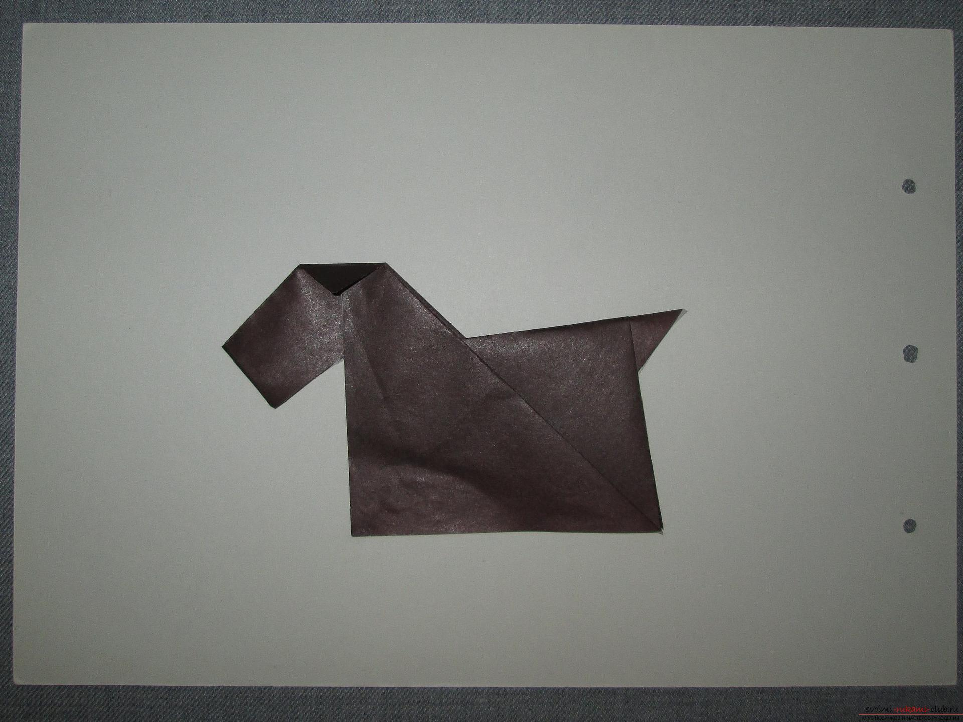 This detailed master class with a photo and description will teach you how to make origami for beginners - origami dog from paper .. Photo # 15