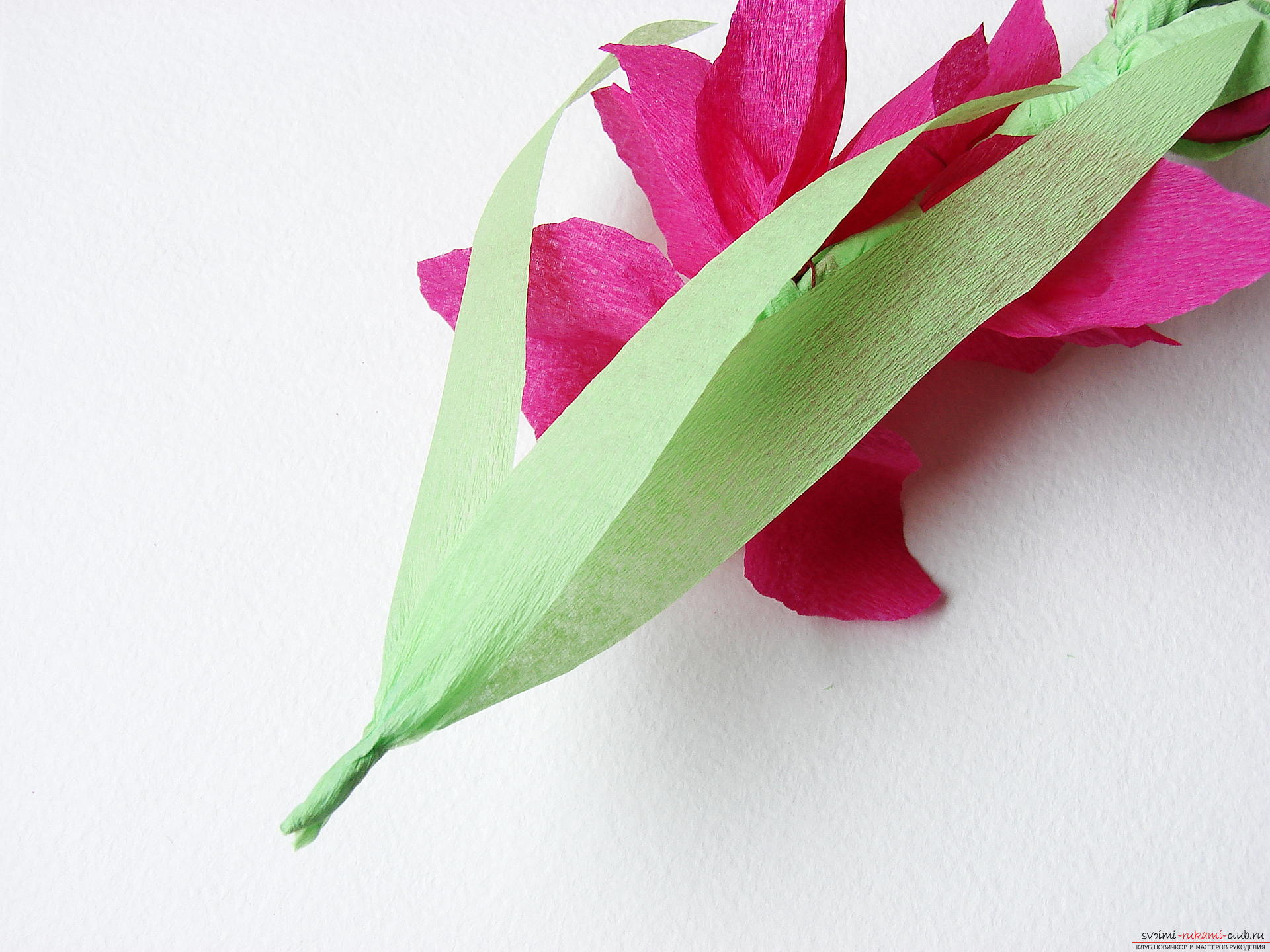 This master class will teach you how to make gladioli flowers from paper with your own hands. Photo # 30