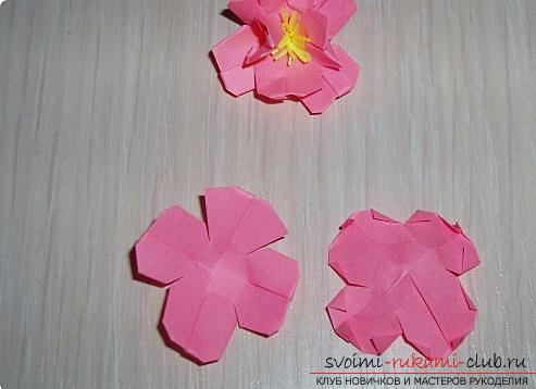Sakura flowers in origami technique. Photo №7