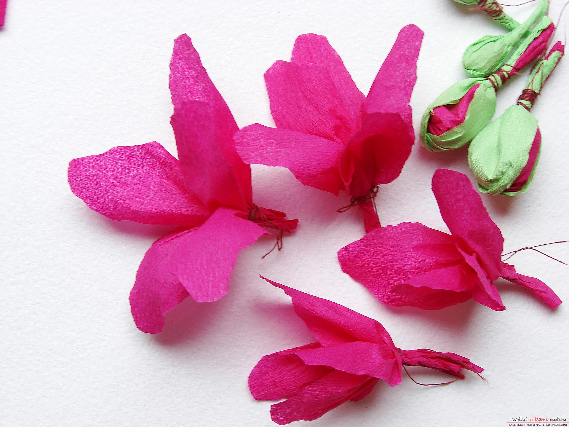 This master class will teach you how to make gladioli flowers out of paper with your hands .. Photo # 22