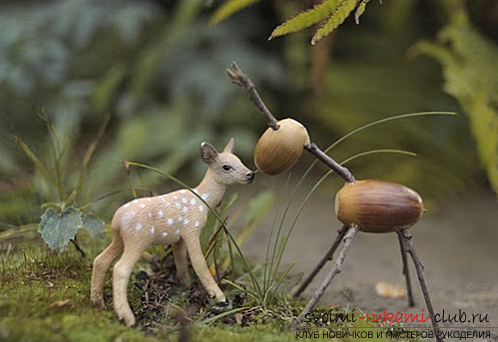 We create interesting crafts from the acorns for your baby with your own hands, using natural materials. Photo №1