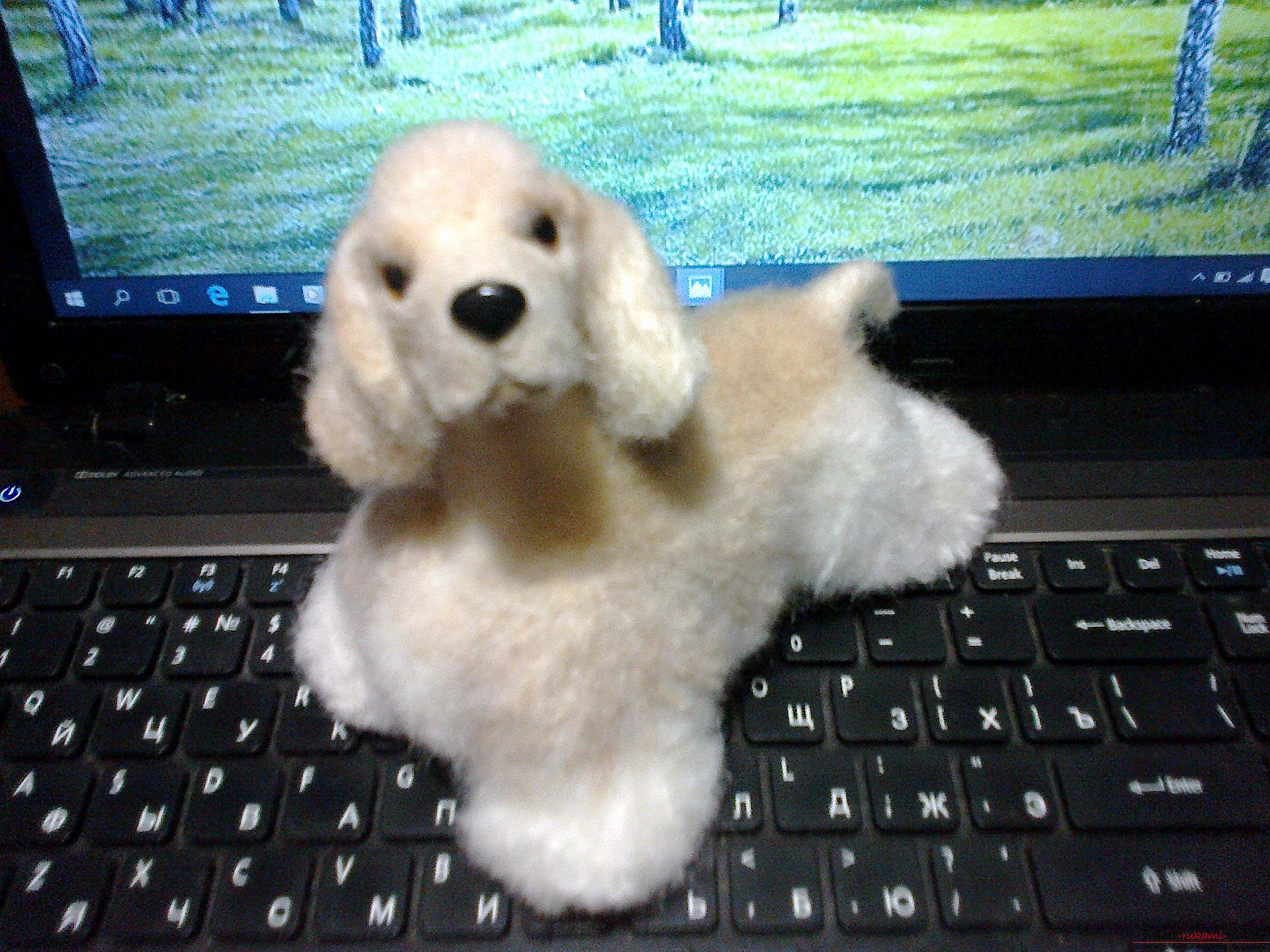 Description of toys in the form of puppies of popular breeds, made in the technique of dry felting. Photo №8