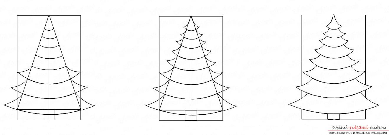 How to draw a Christmas tree with a pencil, a phased photo drawing and a description of the process. Picture №3