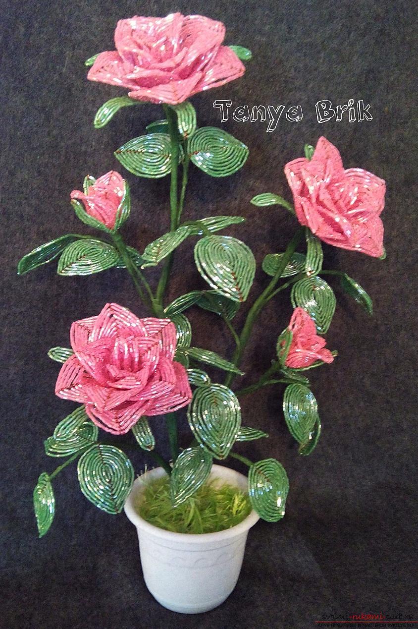 Шикарний букет троянд, зроблений автором своїми руками з бісеру. фото №1