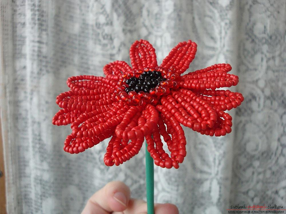 We make a flower from beads for beginners, lessons of creating a flower from beads. Picture №3