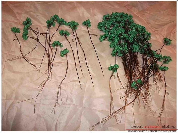 How to make a bonsai tree of beads with your own hands, several master classes of creating bonsai in different color solutions, step-by-step photos and description. Photo №7