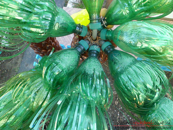 Crafts from plastic bottles, hand-made articles for the garden, how to make a palm from plastic bottles with their own hands, step-by-step instructions explaining the photo .. Photo №11
