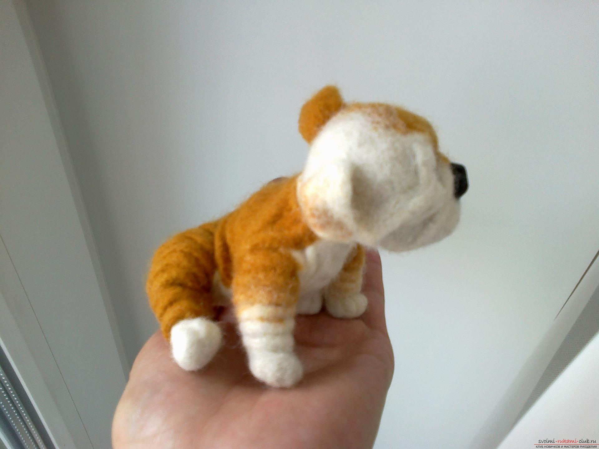 Master class on felting English Bulldog toys made of wool as a gift. Photo # 2